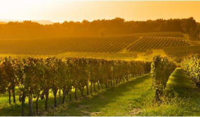 L' Enclos de Saint-Jacques Bordeaux